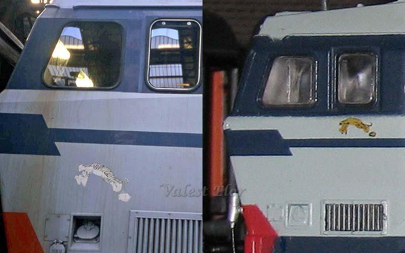 """Posizionamento del logo della """"Tigre"""" al vero (a sinistra) e sul modello Lima (a destra)"""